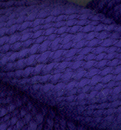 seedling4510_small.jpg